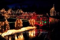 VanDusen-Botanical-Garden-Christmas-Vancouver-BC-British ...