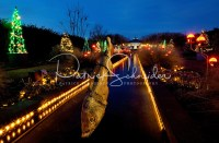 Holiday Lights at the Garden (Daniel Stowe Botanical ...