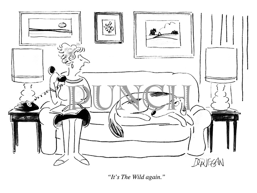 Cartoons about Literature, Authors and Writers from Punch