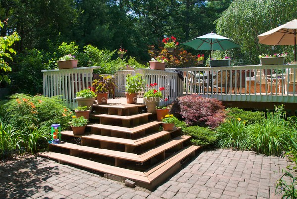 deck and patio landscaping plant