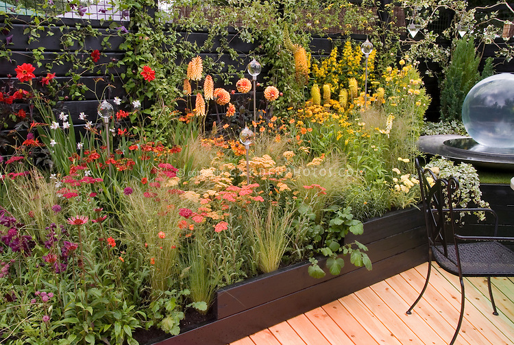 Hot Color Themed Perennial Garden In Red Orange Yellow