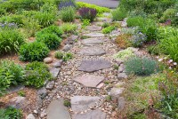 Rock garden on slope with path | Plant & Flower Stock ...