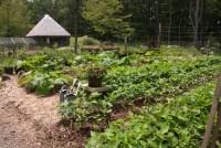 Hobby Farm | Plant & Flower Stock Photography ...