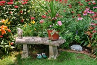 Garden Bench and garden shoes | Plant & Flower Stock ...