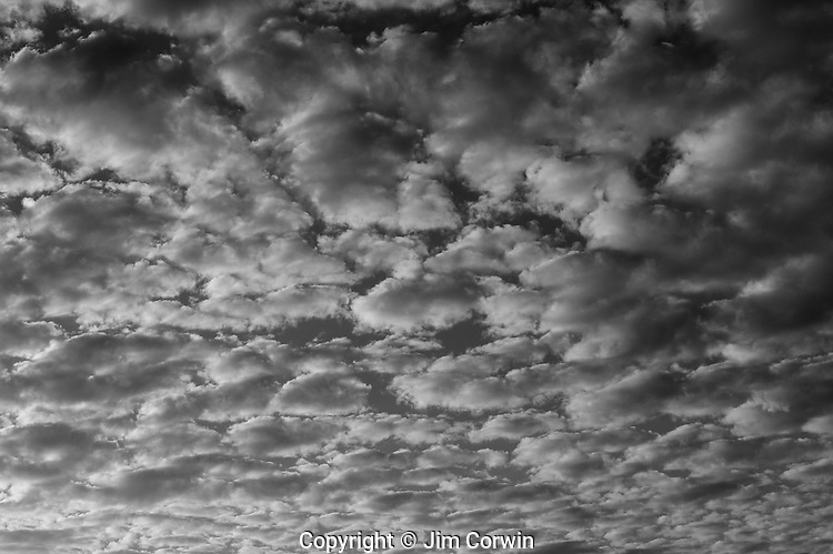 altocumulus cloud patterns jim