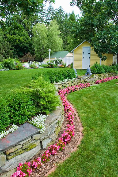 beautiful backyard in summer