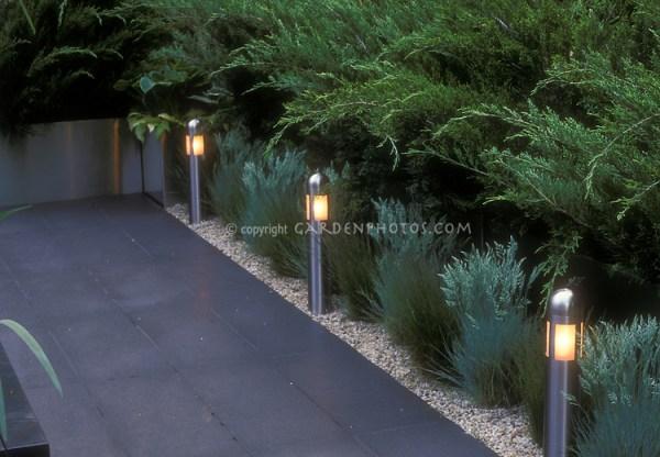 garden steps and walkway night
