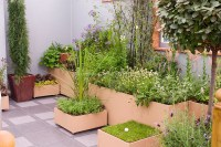 Container garden on patio | Plant & Flower Stock ...