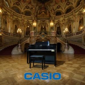 CASIO 電鋼琴