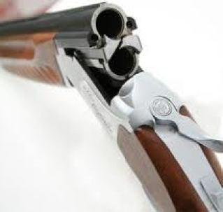 Shotgun 3