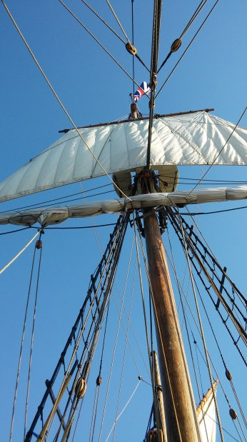 Yes, some of the braver members of my class (NOT including me!) climbed up there to unfurl the sail!
