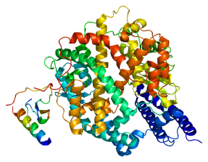 ACE-2 Protein