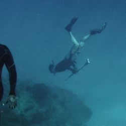 Spear-Fishing Diver