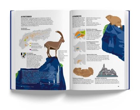 Illustration der Tiere der Alpen aus Das Alpenbuch