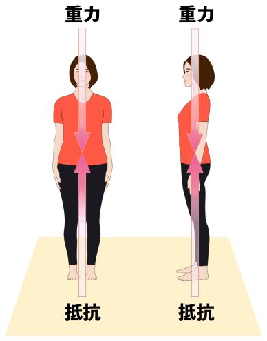 重力を受ける女性の画像