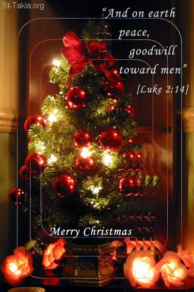 Image Christmas Card 14
