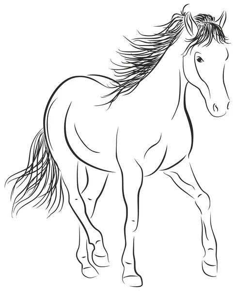 Sketsa Gambar Kuda : sketsa, gambar, Ilustrasi, Foto,, Gambar, Bebas, Royalti, Depositphotos®
