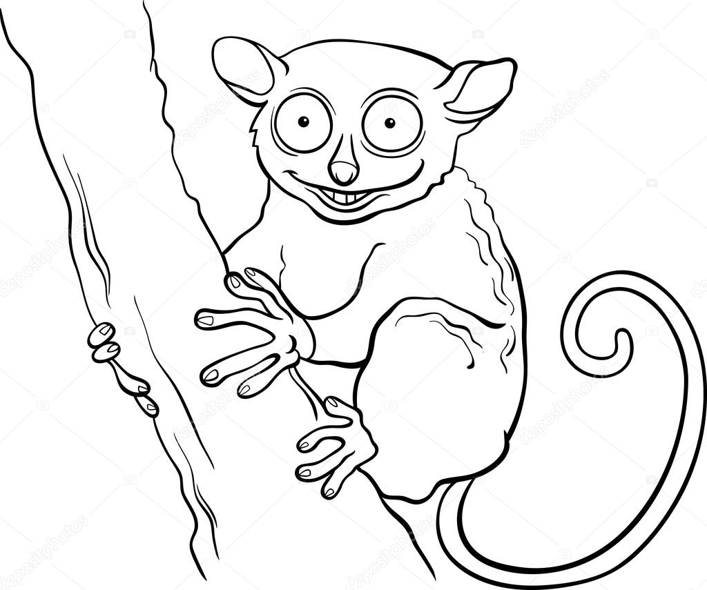 tarsier animal cartoon coloring book — Stock Vector