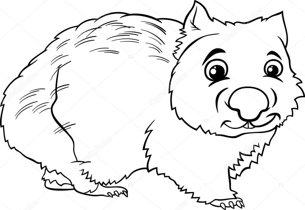 wombat animal cartoon coloring book — Stock Vector