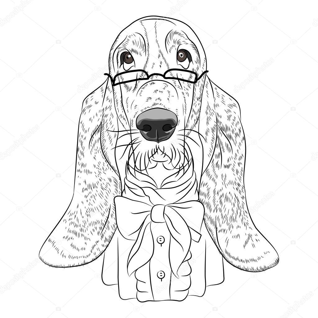 Vecteur dessin animé drôle hipster chien basset hound