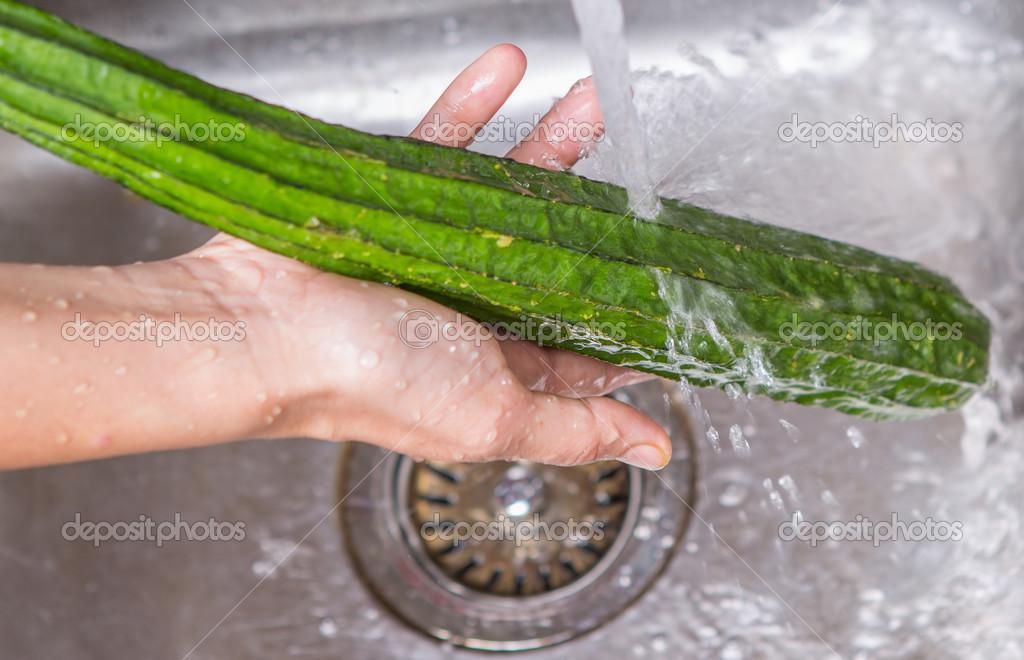 kitchen sink snake chalkboard art 洗涤蛇瓜类蔬菜 图库照片 c akulamatiau 38055037 女手在厨房的水槽里洗蛇瓜类蔬菜 照片作者akulamatiau