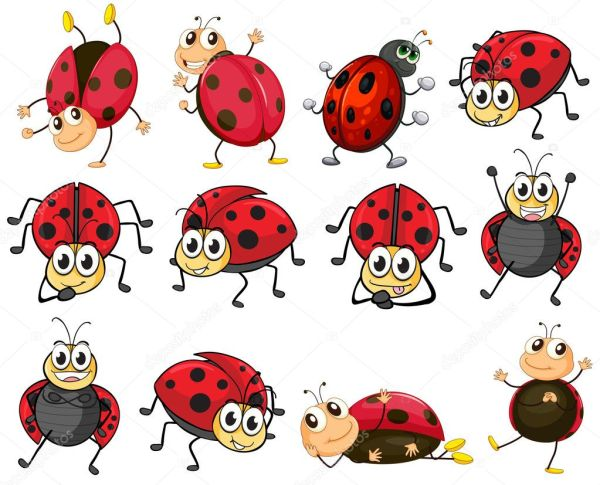 cute ladybugs stock vector