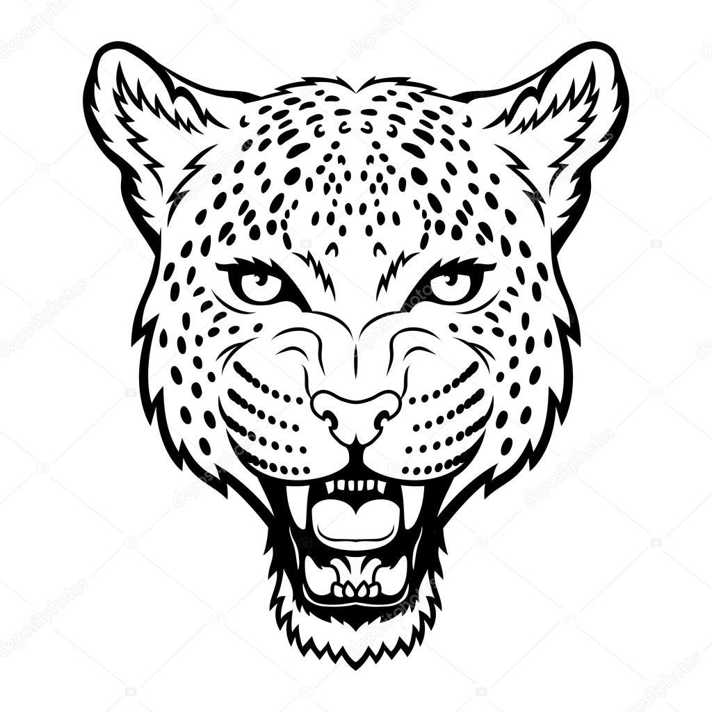 Leopard — Stock Vector © komissar008 #23693127