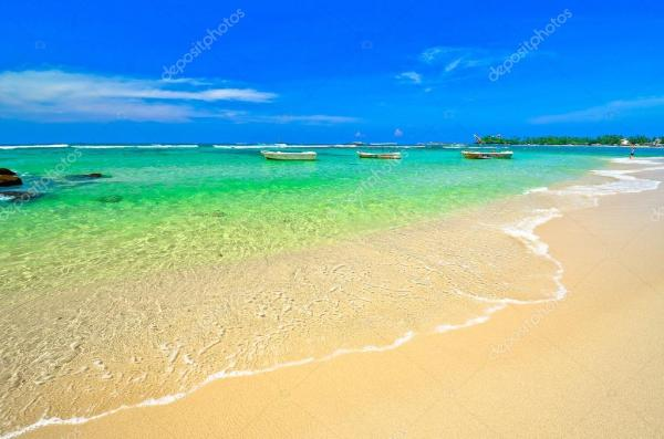 beautiful beach landscape stock