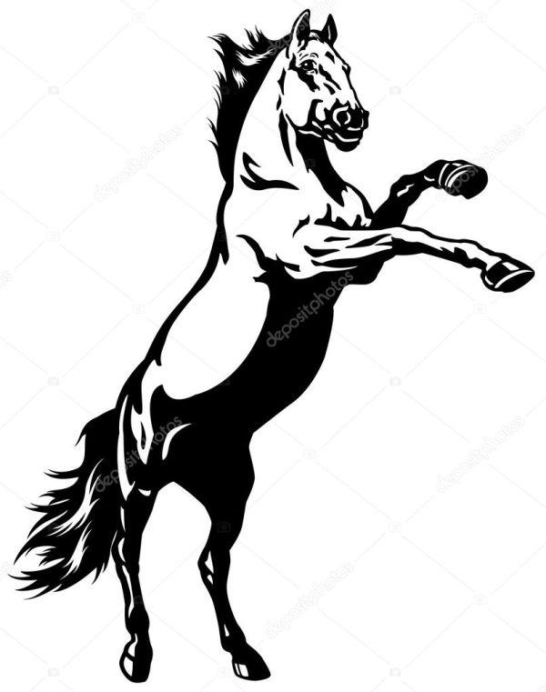 Rearing Mustang Stock Vector Insima #22753311