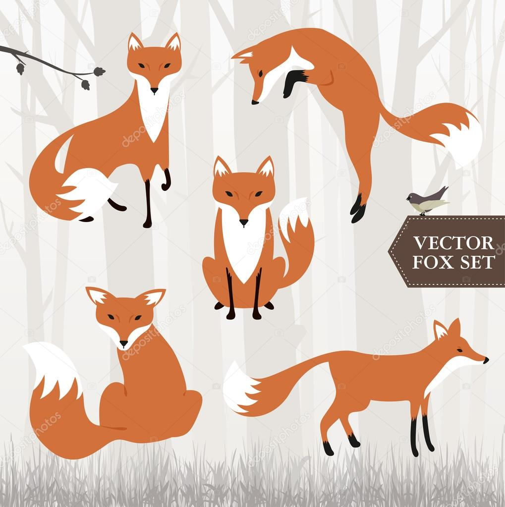 Different Fox Drawings Stock Vector Mactrunk 41741073