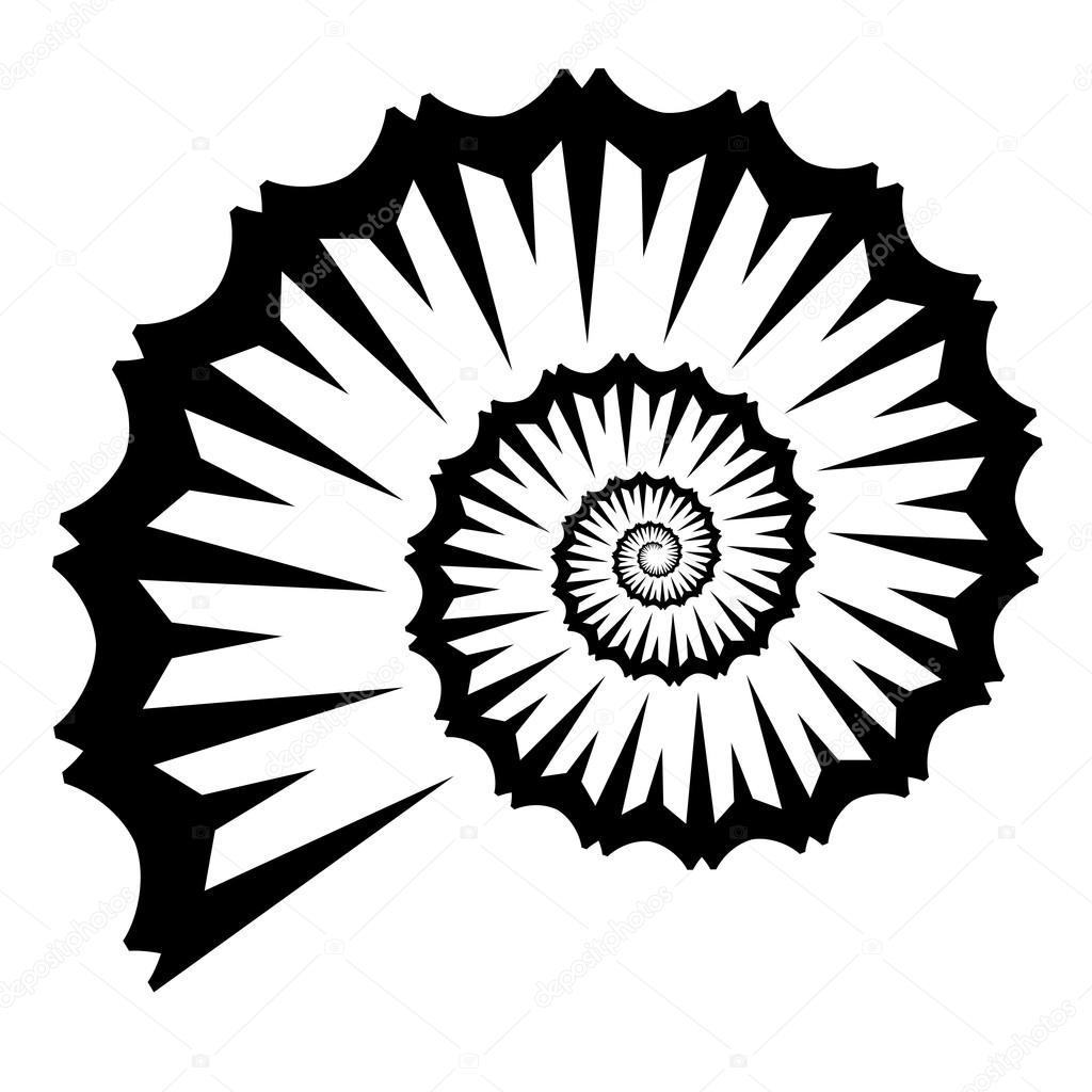 Shell Silhouette