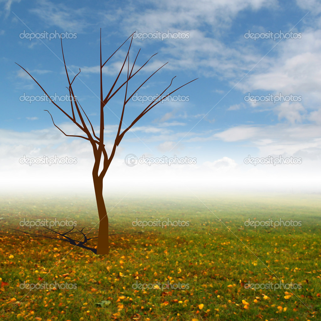 Tree Without Leaves With Autumn Landscape Mist
