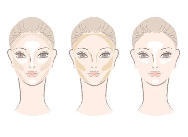 Highlighting and contouring area chart for corrective face shape — Stock Photo