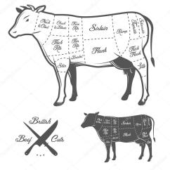 Blank Cow Diagram Subwoofer Wiring Dual 4 Ohm Illustration Cuts Of Beef Pics Stock Photos All Sites
