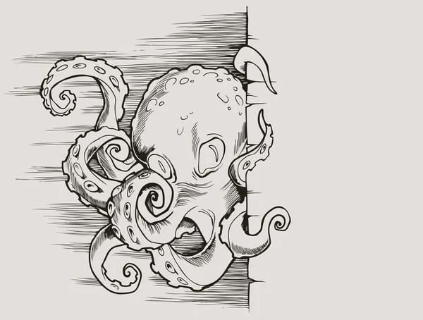 Common octopus (Octopus vulgaris), vintage engraving
