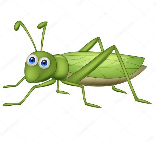 cute grasshopper cartoon stock