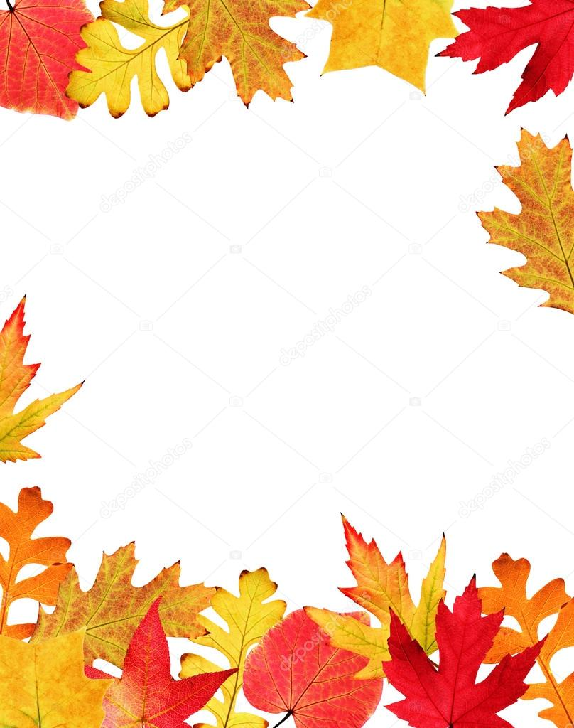 Autumn Falling Leaves Live Wallpaper Fall Leaves Border Stock Photo 169 Beatabecla 19401267