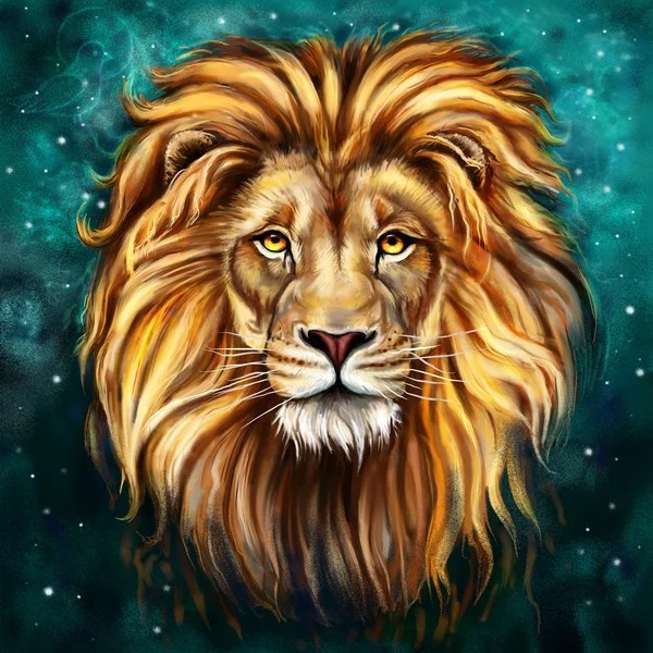 lion head stock photos