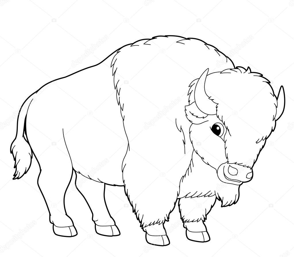 Buffalo Cartoon Animal