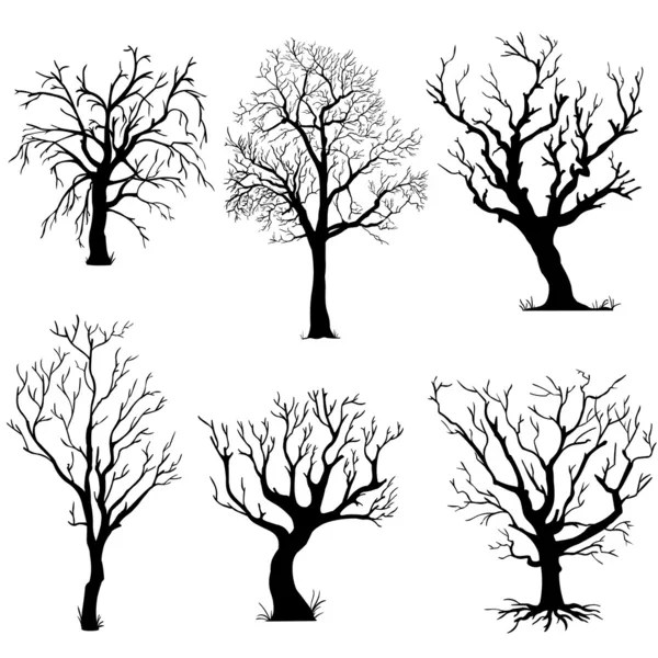 bare tree stock vectors