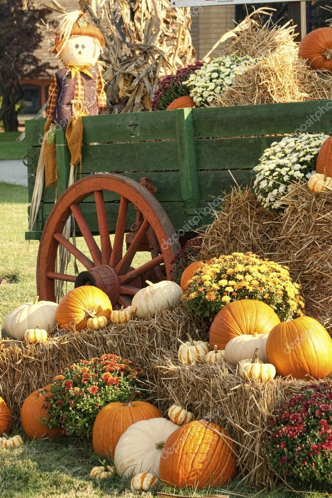 Fall Leaves Live Wallpaper Iphone Antique Wagon Fall Pumpkin Display Stock Photo