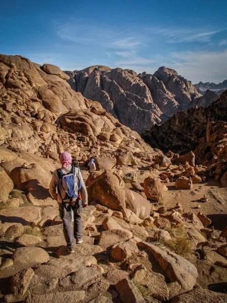 西奈沙漠景觀 — 圖庫照片©Kotangens#123405544