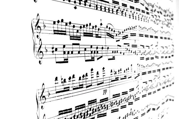Music notes — Stock Photo © lalan33 #6493141