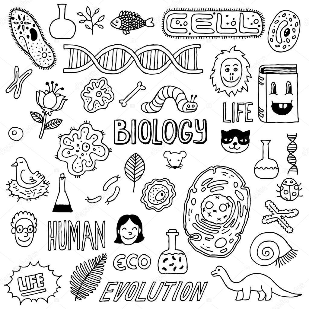 Biology doodles — Stock Vector © Sashatigar #51488045