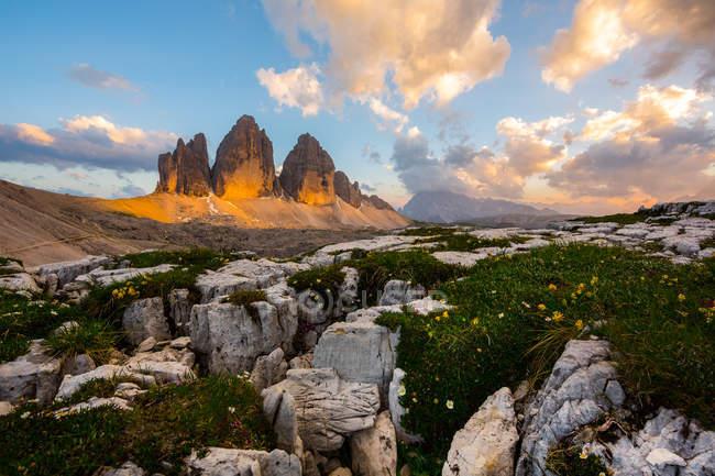 Paesaggio naturale con vette di montagne  i fiori punto di riferimento  Stock Photo  158538792