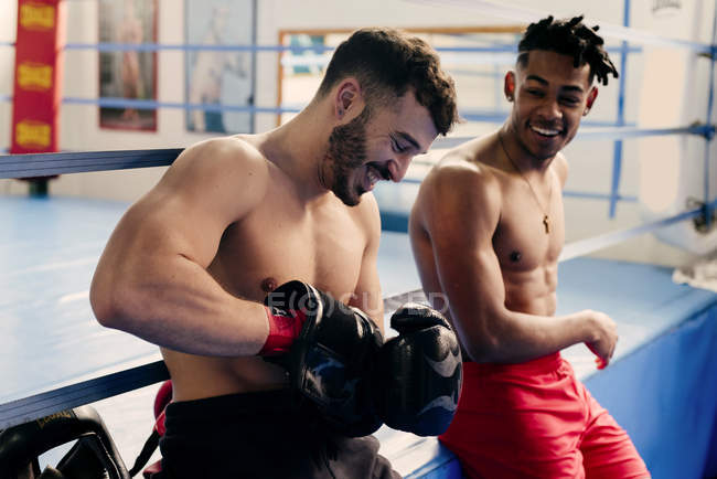 Muscular Men Putting On Boxing Gloves Stock Photo