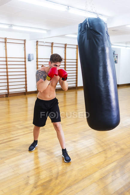 young guy boxing punch