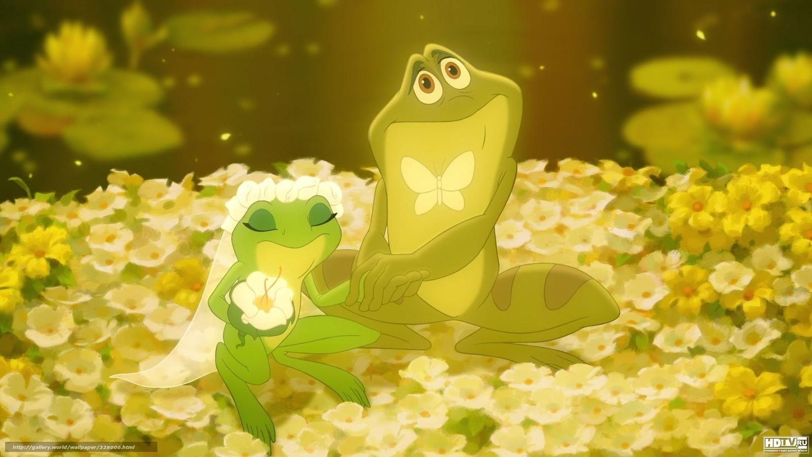 Download Hintergrund Frosch Hochzeit Brutigam Braut
