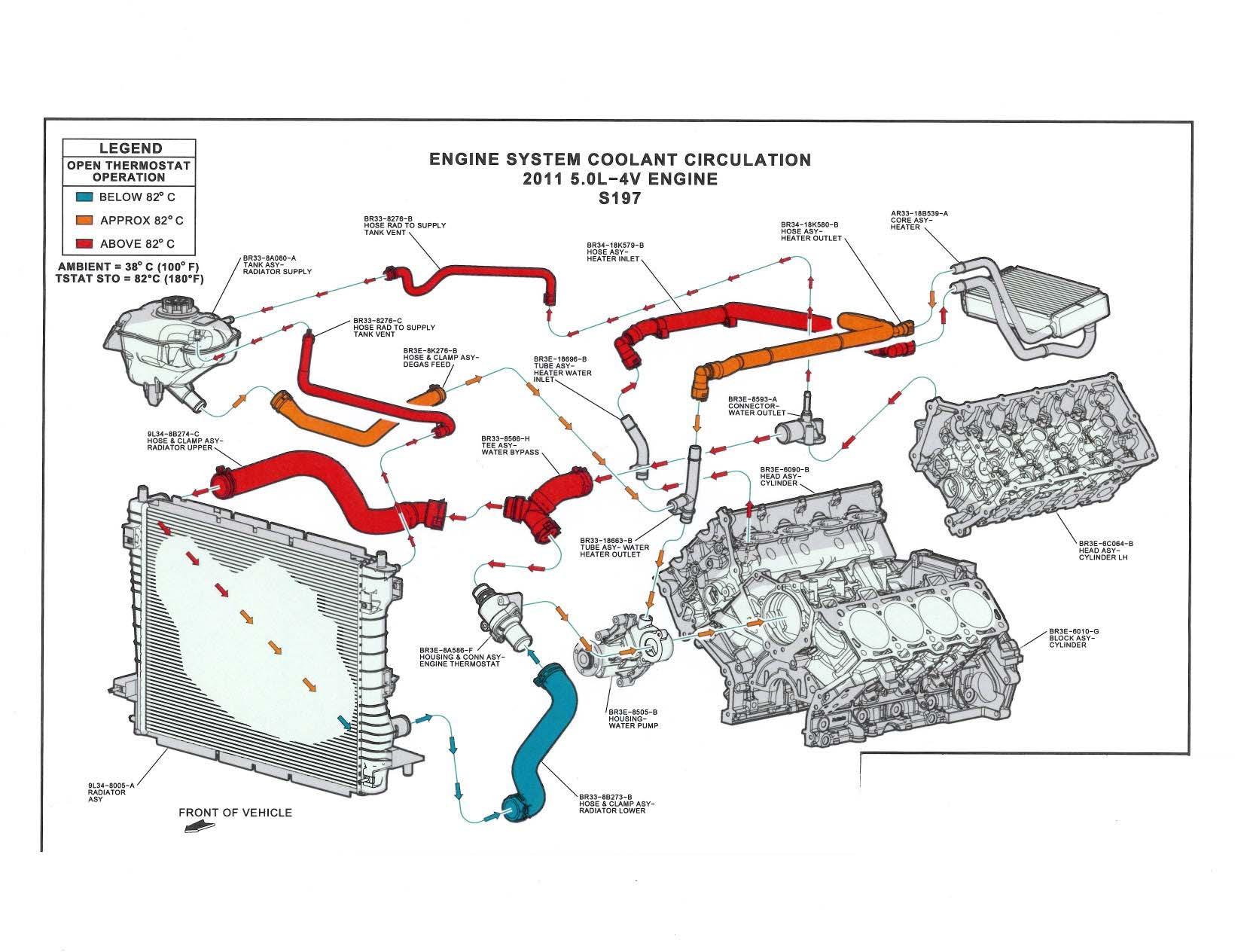 medium resolution of ford coyote diagram wiring diagram source coyote skeleton diagram ford coyote diagram