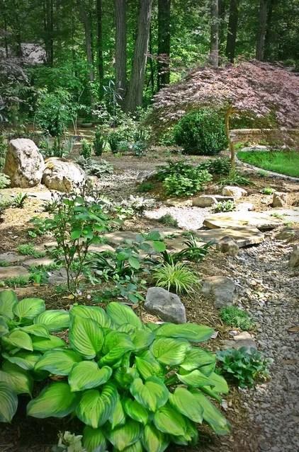 landscape ideas wooded backyard